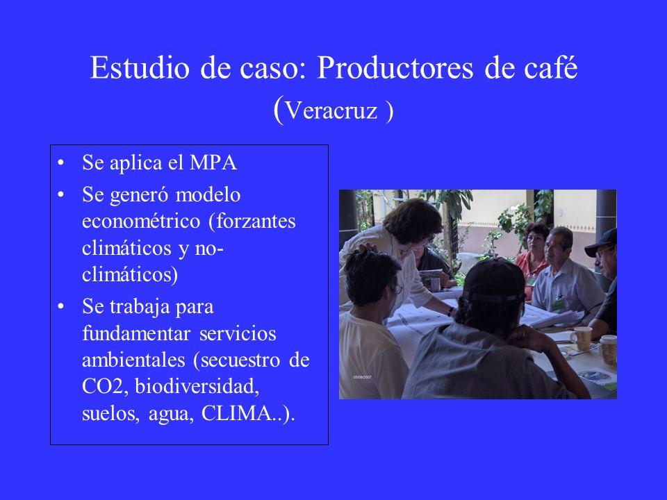 Estudio de caso: Productores de café (Veracruz )