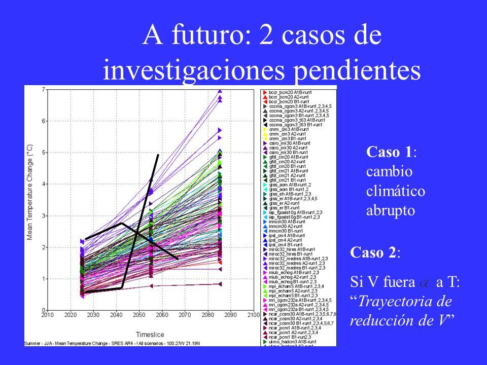 A futuro: 2 casos de investigaciones pendientes