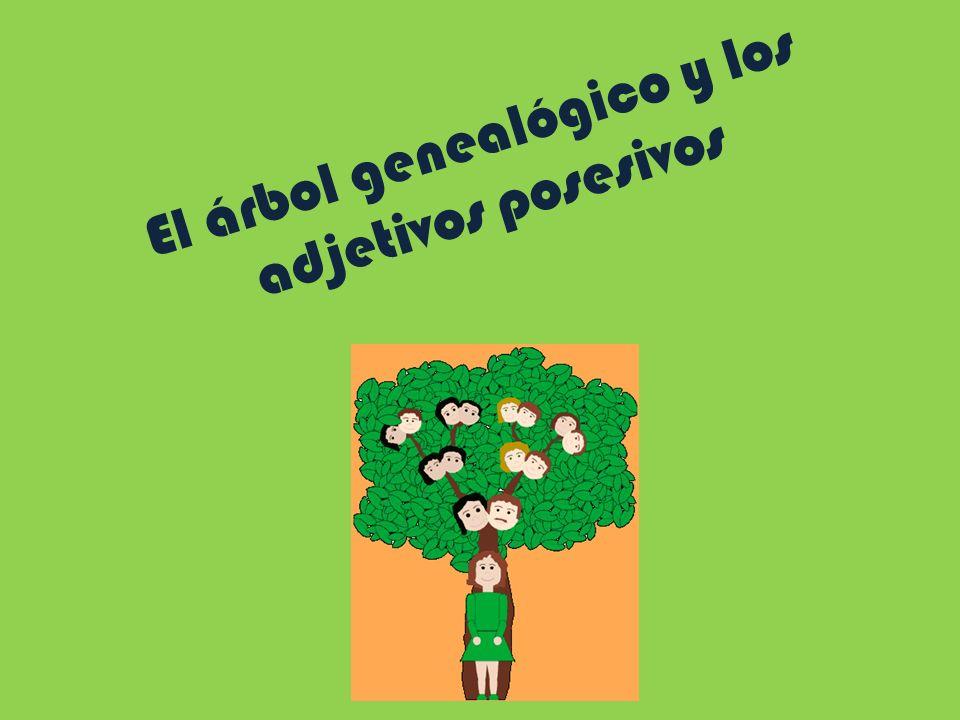 El árbol genealógico y los adjetivos posesivos