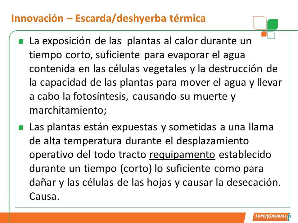 Innovación – Escarda/deshyerba térmica