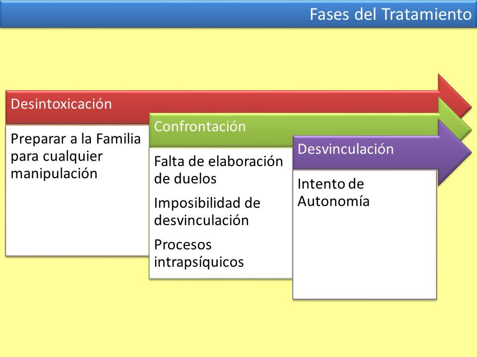 Fases del Tratamiento Desintoxicación