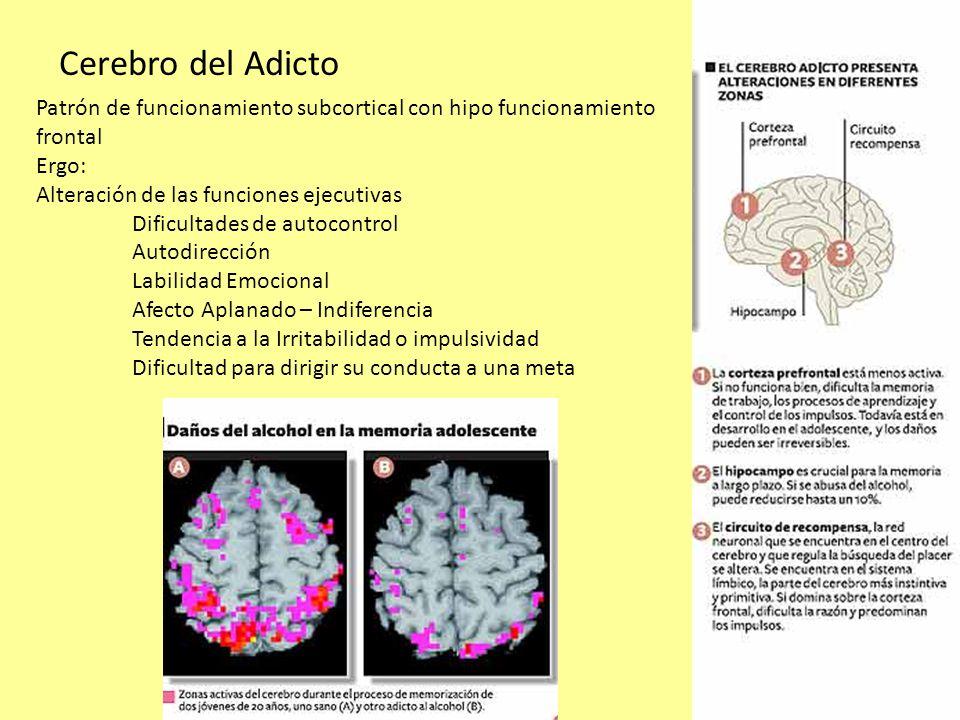 Cerebro del Adicto Patrón de funcionamiento subcortical con hipo funcionamiento frontal. Ergo: Alteración de las funciones ejecutivas.
