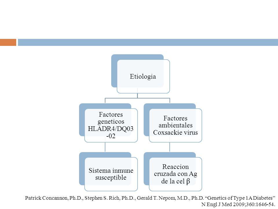 Factores geneticos HLADR4/DQ03-02
