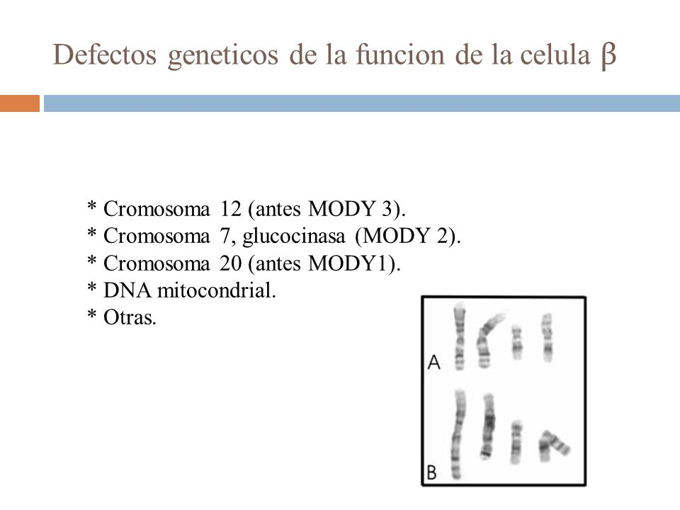 Defectos geneticos de la funcion de la celula β