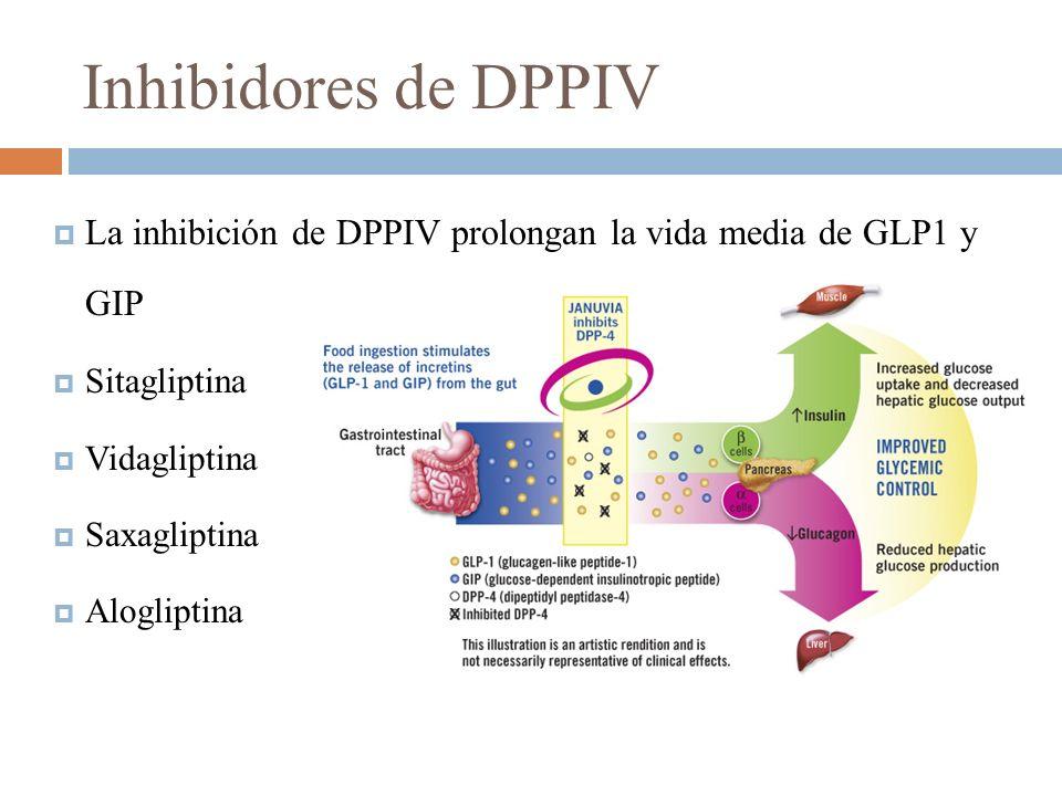 Inhibidores de DPPIV La inhibición de DPPIV prolongan la vida media de GLP1 y GIP. Sitagliptina. Vidagliptina.