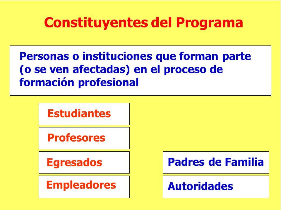 Constituyentes del Programa