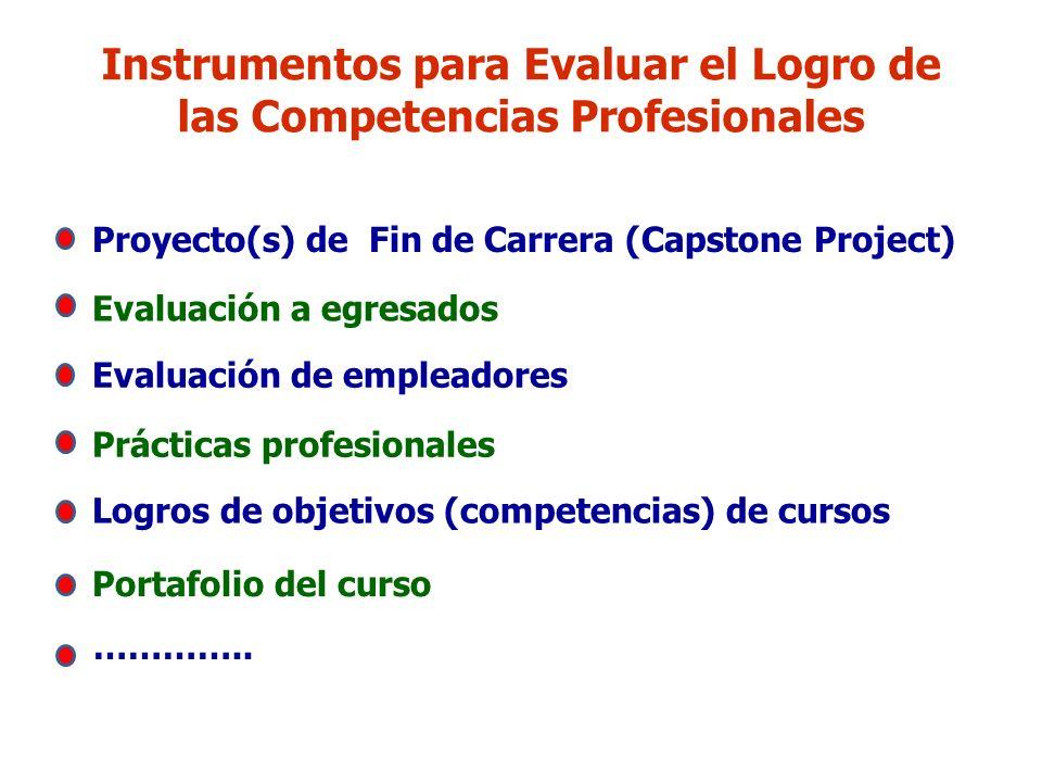 Instrumentos para Evaluar el Logro de las Competencias Profesionales