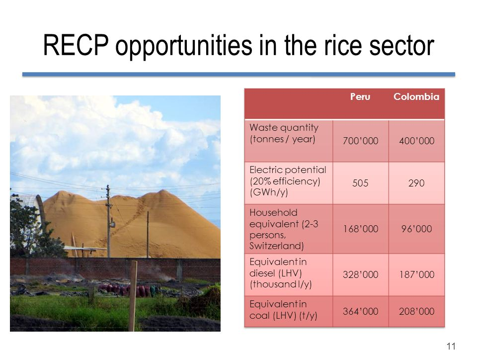RECP opportunities in the rice sector
