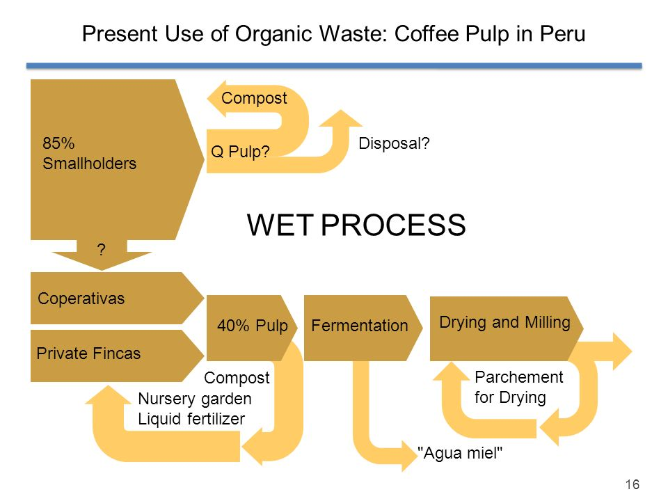 Present Use of Organic Waste: Coffee Pulp in Peru