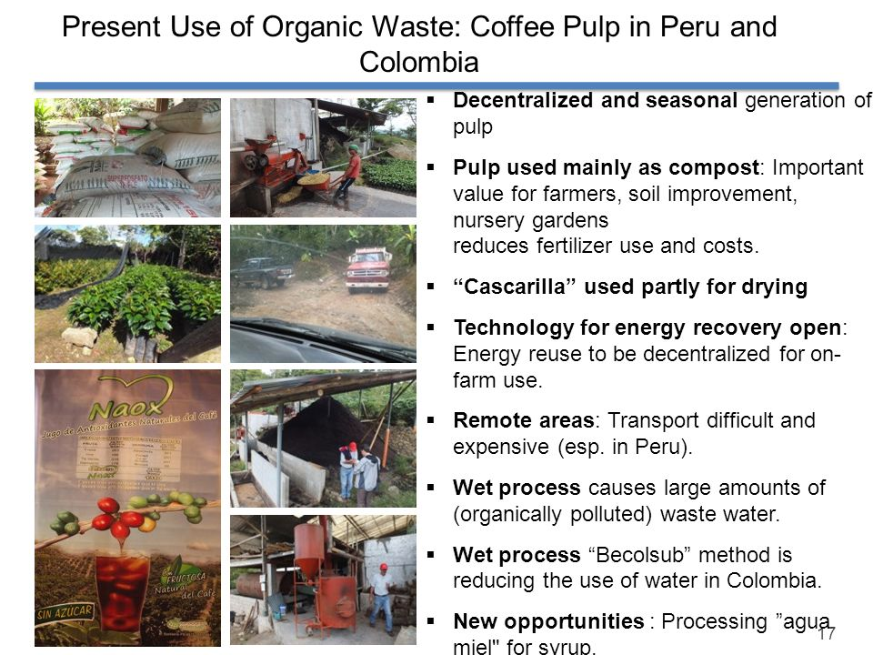 Present Use of Organic Waste: Coffee Pulp in Peru and Colombia