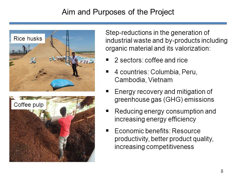 Aim and Purposes of the Project