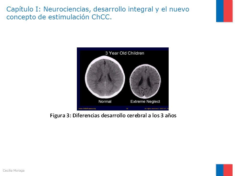 Capítulo I: Neurociencias, desarrollo integral y el nuevo concepto de estimulación ChCC.