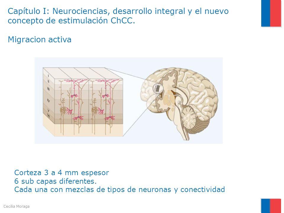 Capítulo I: Neurociencias, desarrollo integral y el nuevo concepto de estimulación ChCC. Migracion activa