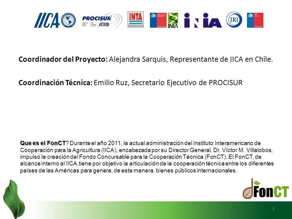 Coordinación Técnica: Emilio Ruz, Secretario Ejecutivo de PROCISUR