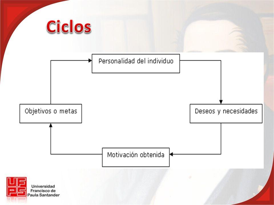Ciclos