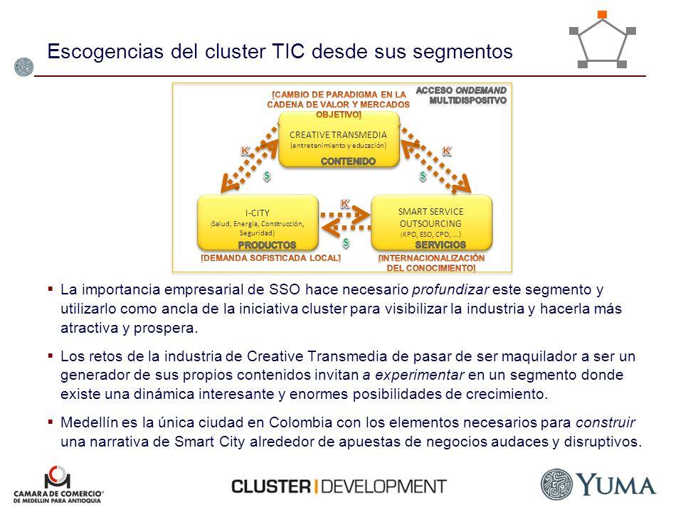 Escogencias del cluster TIC desde sus segmentos