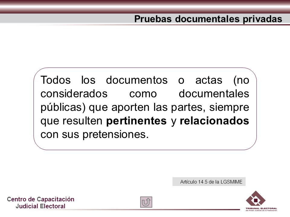 Pruebas documentales privadas