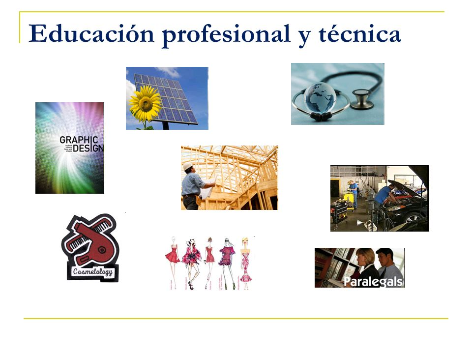 Educación profesional y técnica