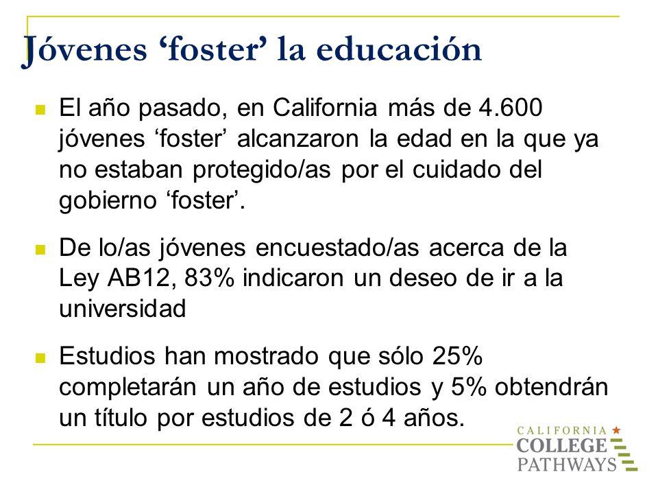 Jóvenes 'foster' la educación