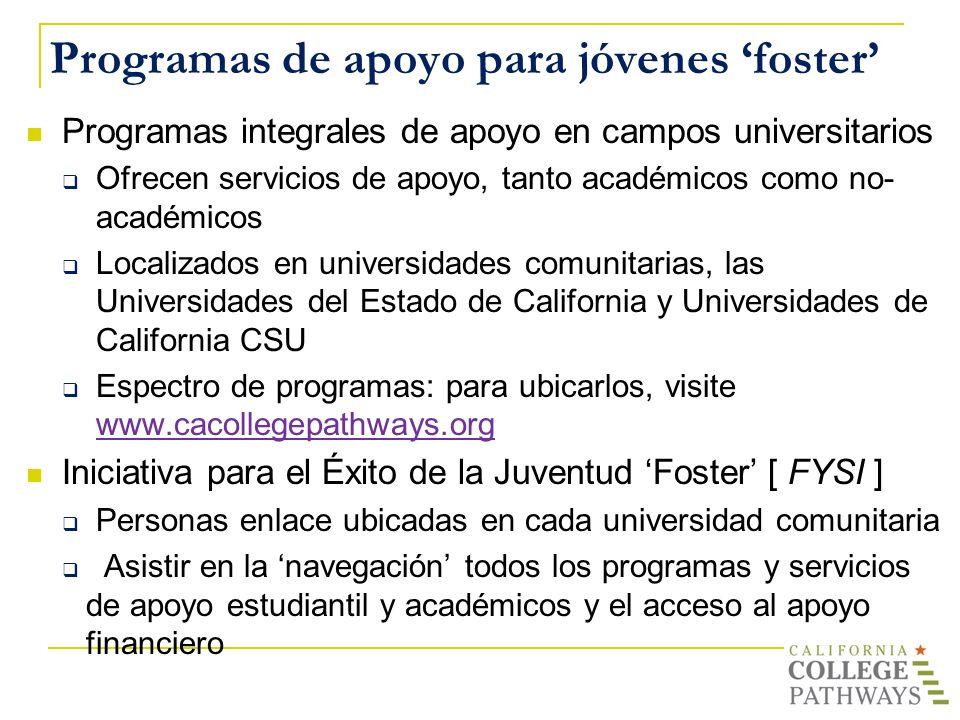 Programas de apoyo para jóvenes 'foster'