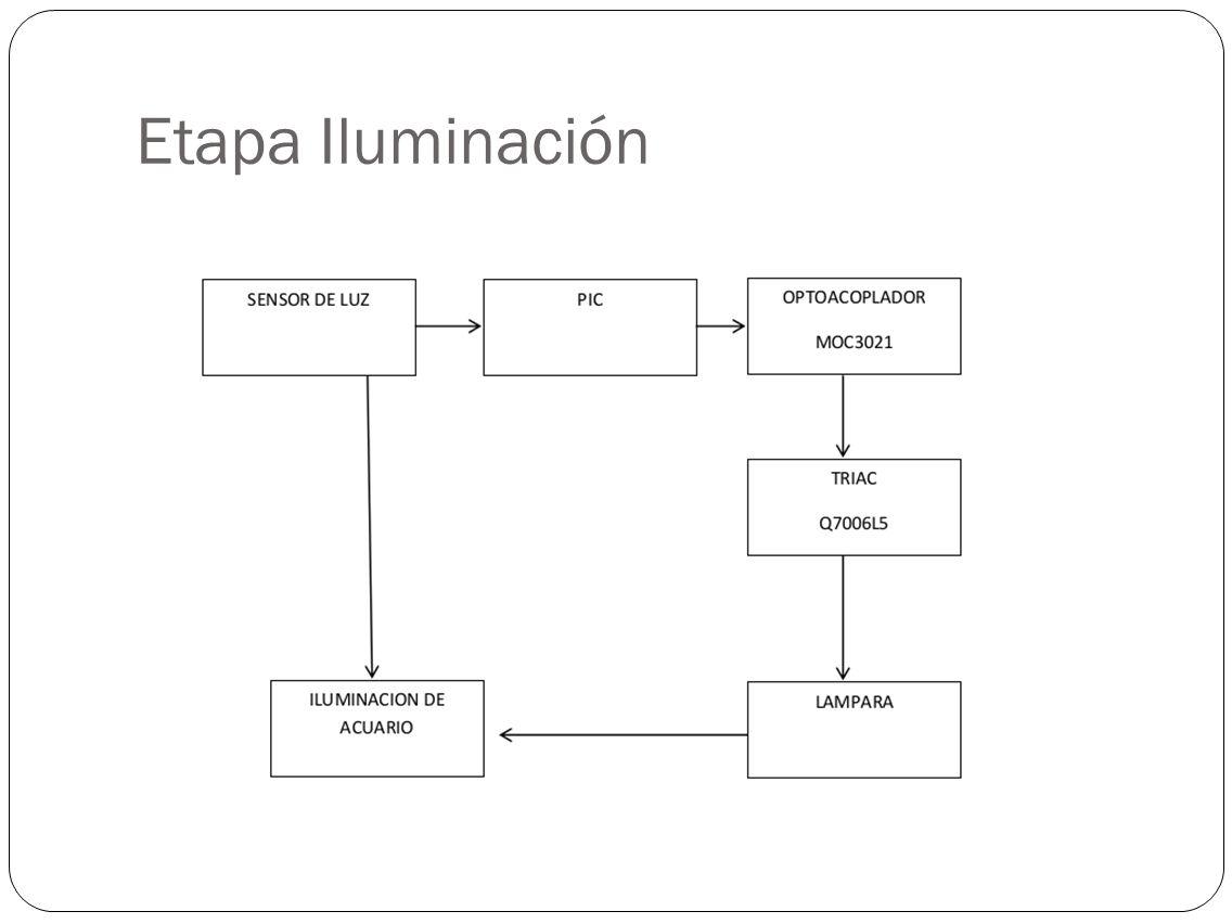 Etapa Iluminación