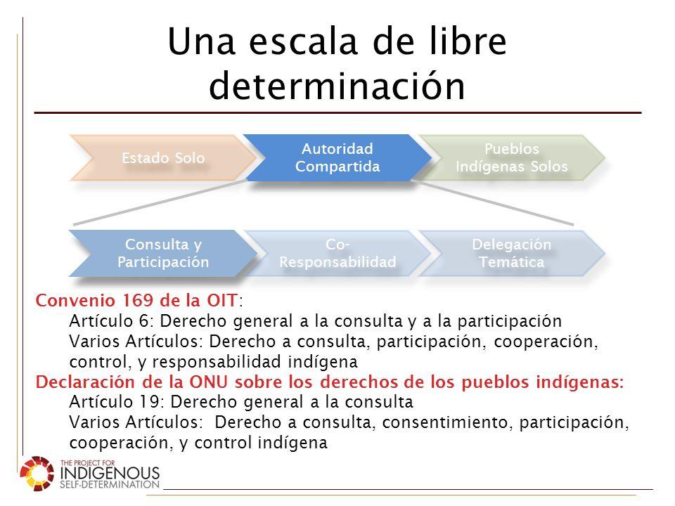 Una escala de libre determinación