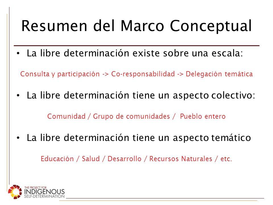 Resumen del Marco Conceptual