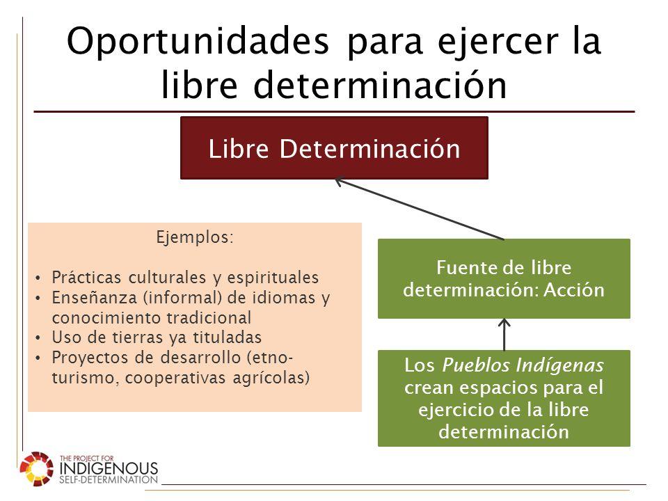 Oportunidades para ejercer la libre determinación