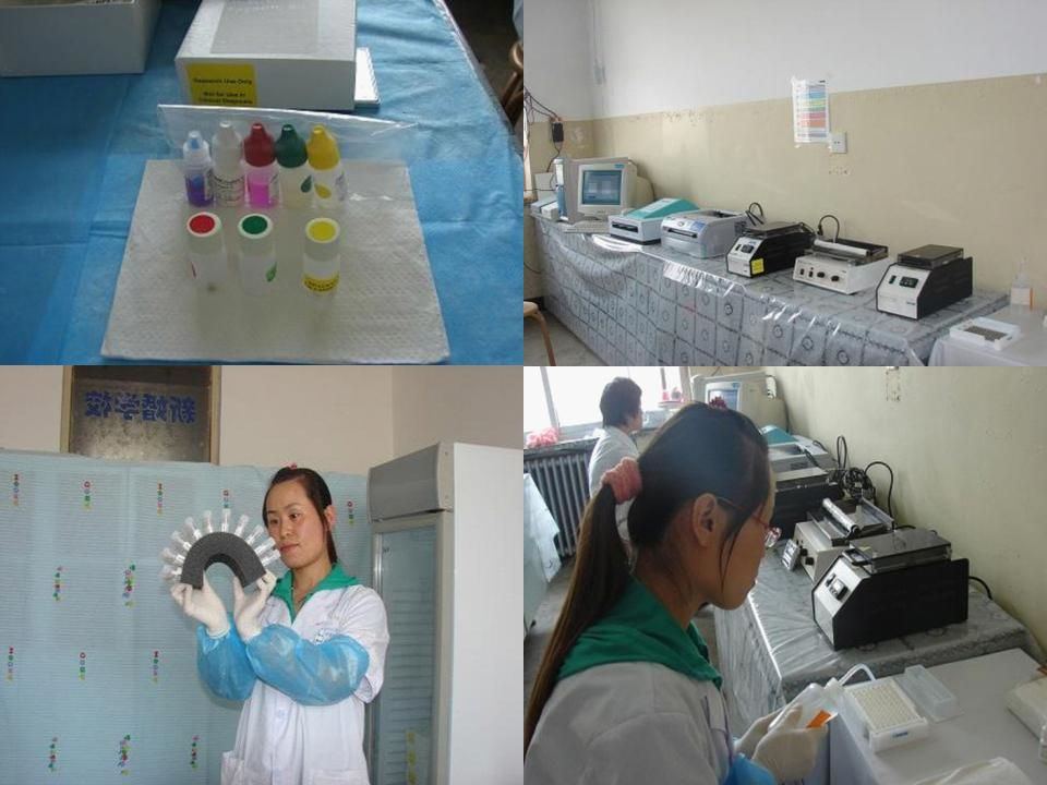 The careHPV ™ Test (prototype) tested during the START Project; most of the work was done manually.