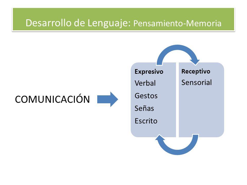 Desarrollo de Lenguaje: Pensamiento-Memoria