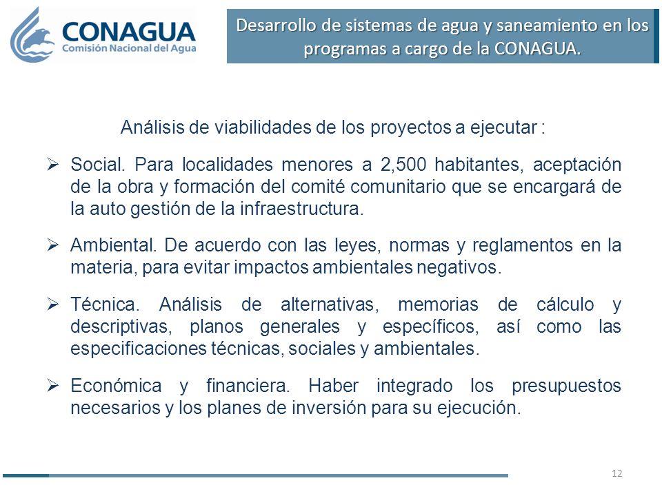 Análisis de viabilidades de los proyectos a ejecutar :