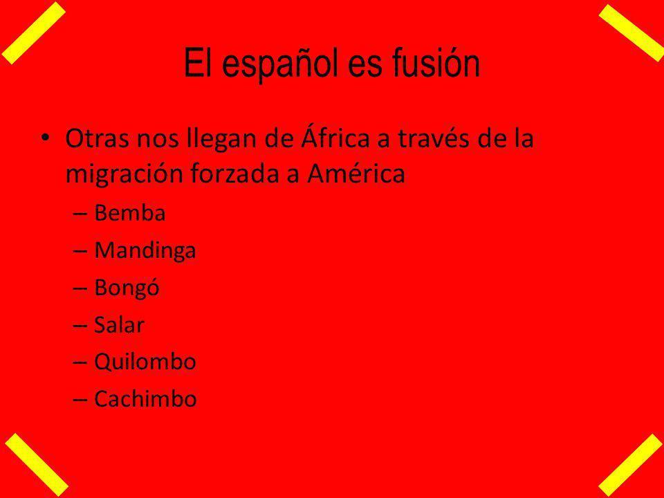 El español es fusión Otras nos llegan de África a través de la migración forzada a América. Bemba.
