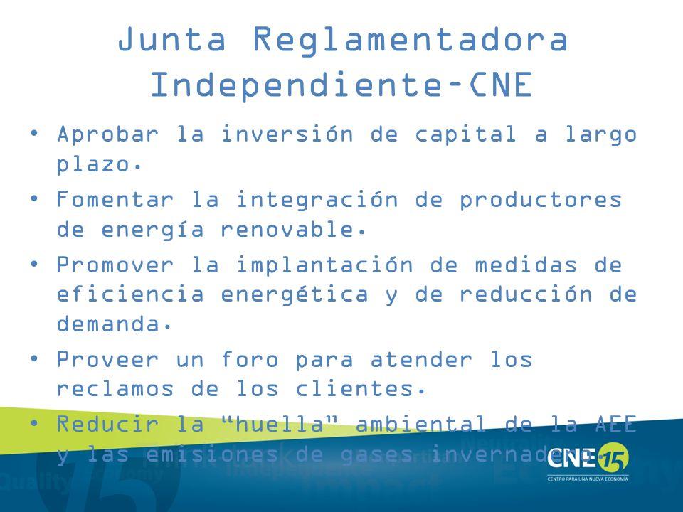 Junta Reglamentadora Independiente–CNE
