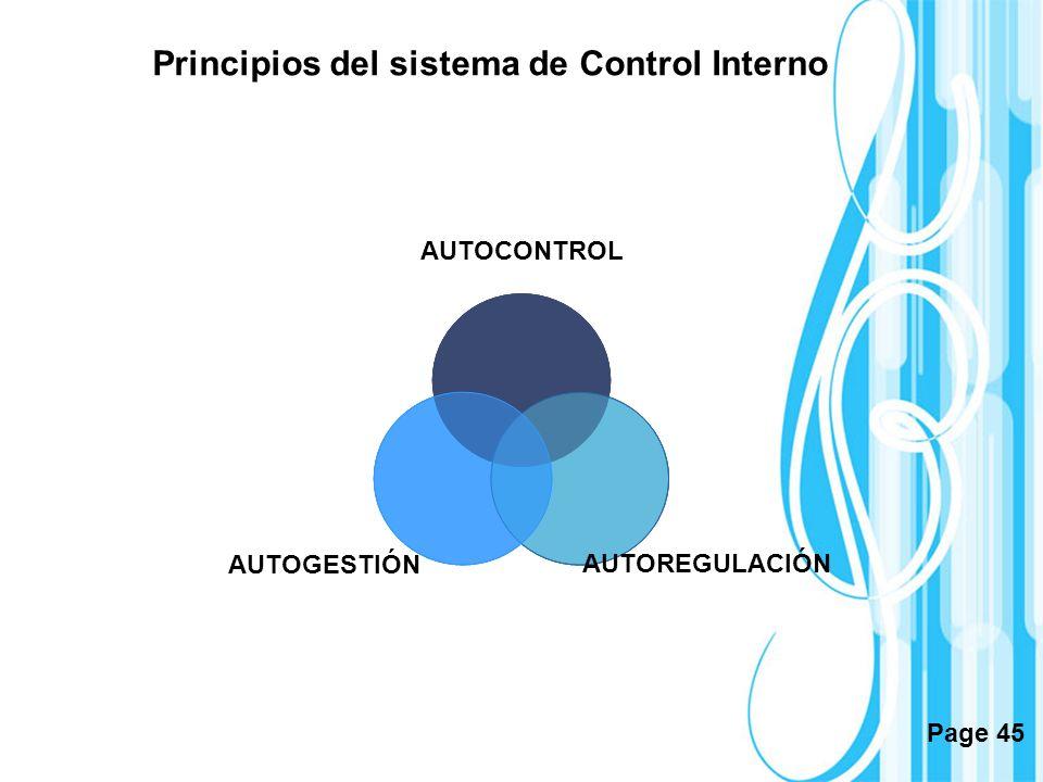 Principios del sistema de Control Interno