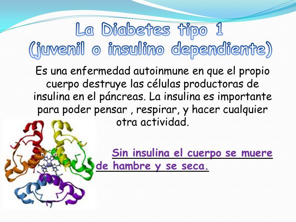 (juvenil o insulino dependiente)