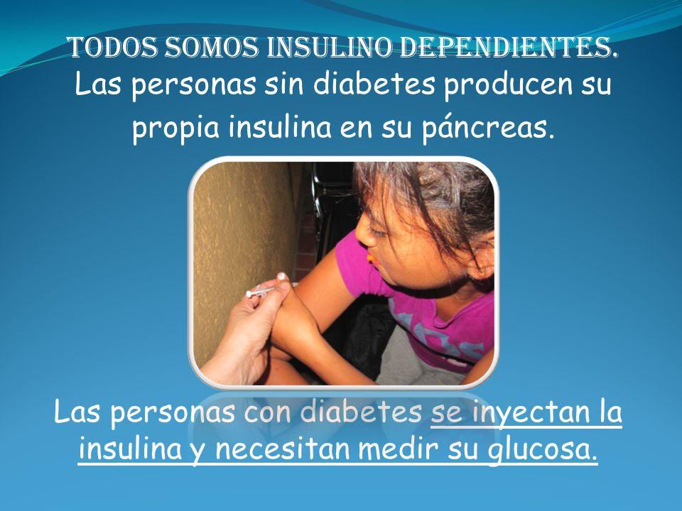 propia insulina en su páncreas.