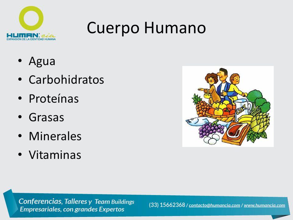 Cuerpo Humano Agua Carbohidratos Proteínas Grasas Minerales Vitaminas