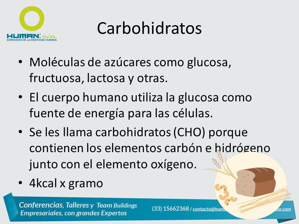 Carbohidratos Moléculas de azúcares como glucosa, fructuosa, lactosa y otras.