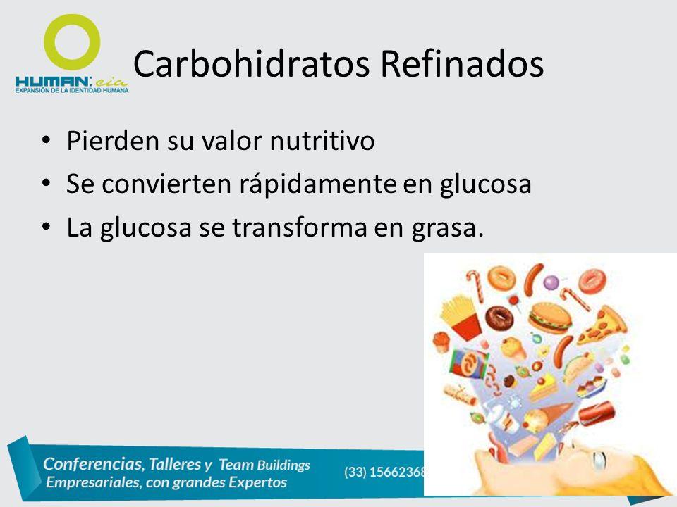 Carbohidratos Refinados