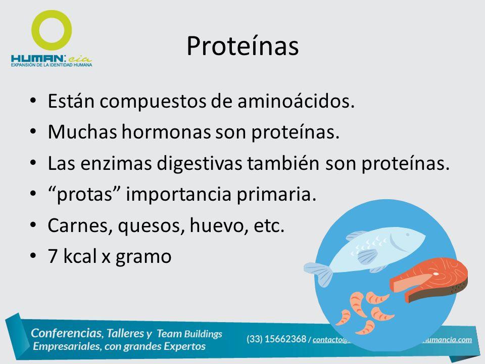 Proteínas Están compuestos de aminoácidos.