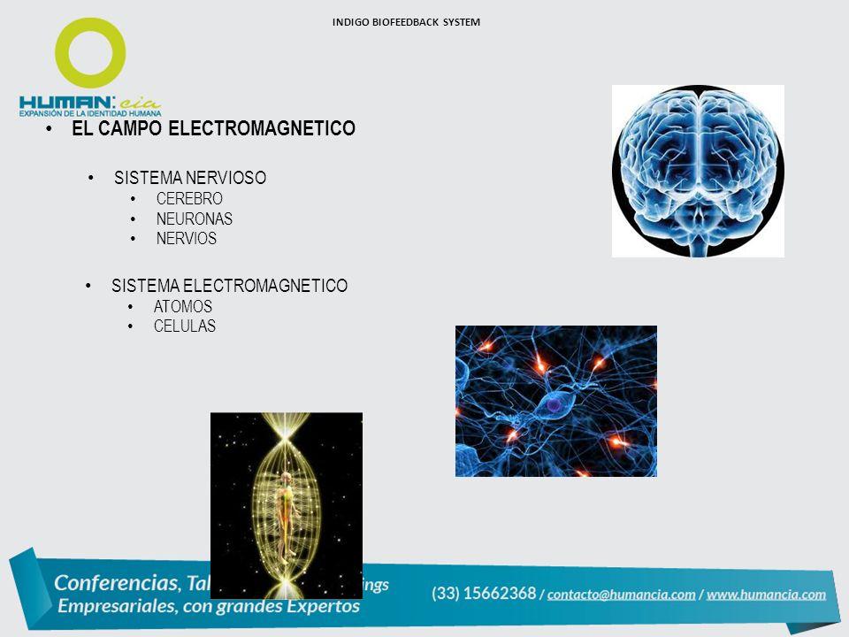 EL CAMPO ELECTROMAGNETICO