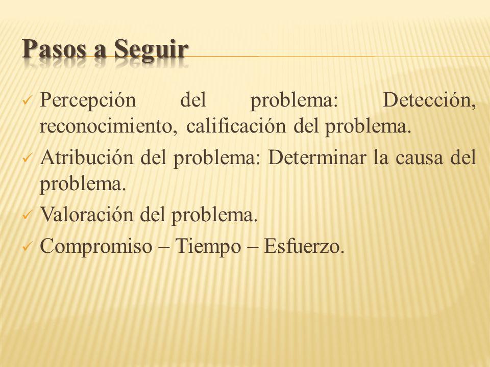 Pasos a Seguir Percepción del problema: Detección, reconocimiento, calificación del problema.
