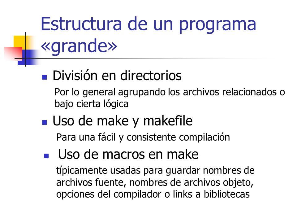 Estructura de un programa «grande»