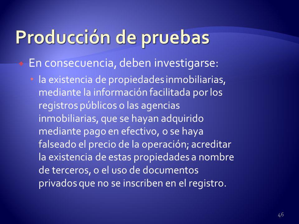 Producción de pruebas En consecuencia, deben investigarse: