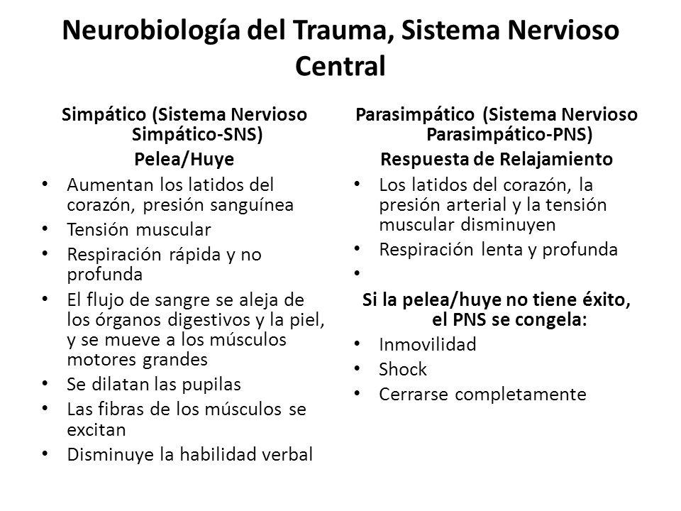 Neurobiología del Trauma, Sistema Nervioso Central