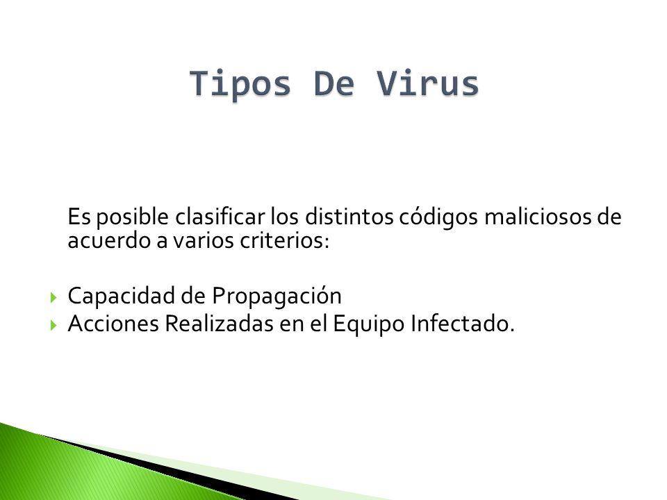 Tipos De Virus Es posible clasificar los distintos códigos maliciosos de acuerdo a varios criterios: