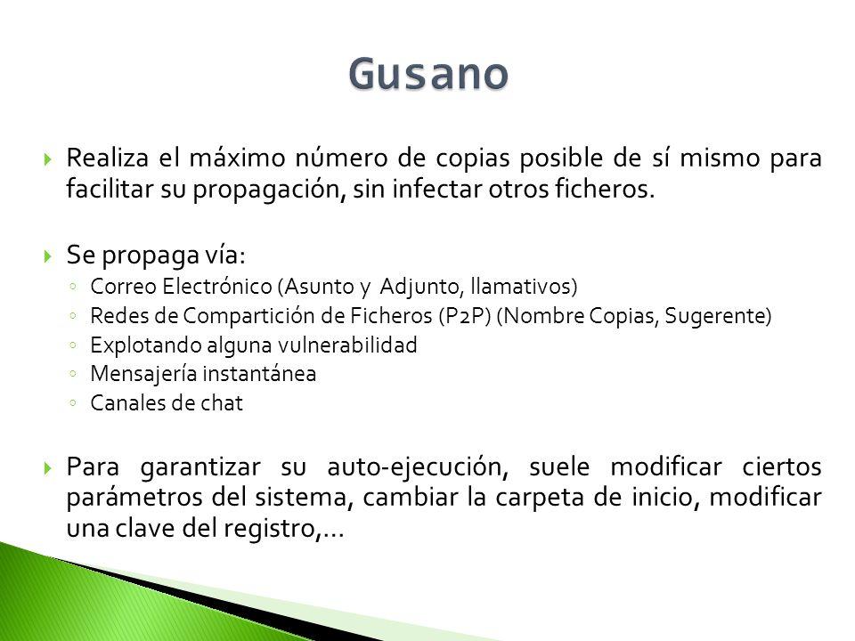 Gusano Realiza el máximo número de copias posible de sí mismo para facilitar su propagación, sin infectar otros ficheros.