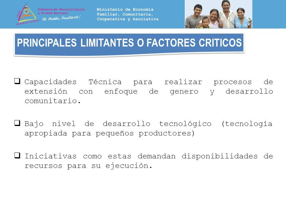 PRINCIPALES LIMITANTES O FACTORES CRITICOS