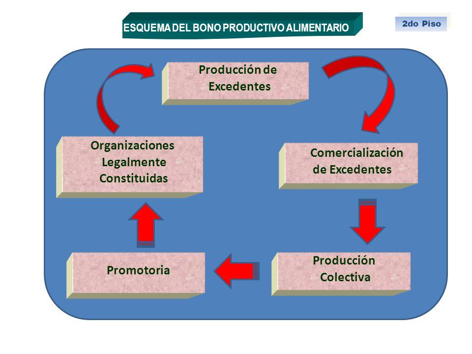Producción de Excedentes Organizaciones Legalmente de Excedentes