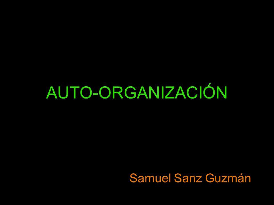 AUTO-ORGANIZACIÓN Samuel Sanz Guzmán